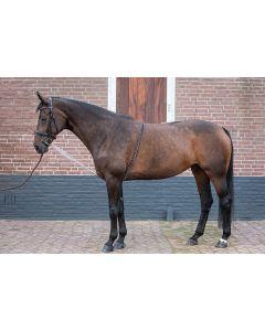 Harry's Horse Longeerhulp Soft
