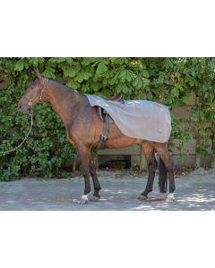 Harry's Horse Teddyfleece uitrijdeken