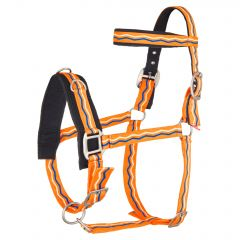 Imperial Riding Lunge caveson Nylon