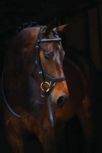 Horseware Rambo Micklem Diamante Competition