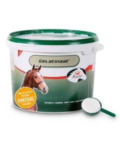 Sectolin Gelatinaat Paard – PrimeVal