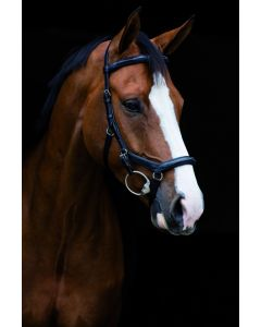 Horseware Micklem Deluxe Competition English Leather